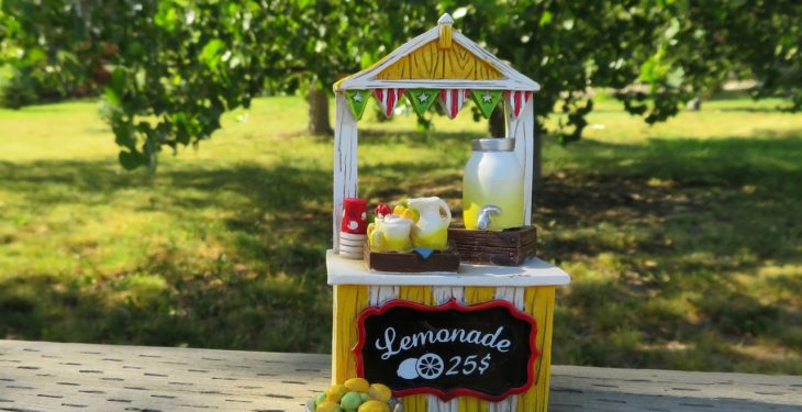 After Dad Passes Away, 6-Year-Old Uses Lemonade Stand